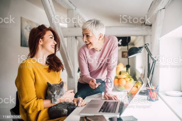 Women stroking a pet picture id1133752032?b=1&k=6&m=1133752032&s=612x612&h=8loyuqcob9emc otkp0kie zro0lwvt9tg5vboexslg=