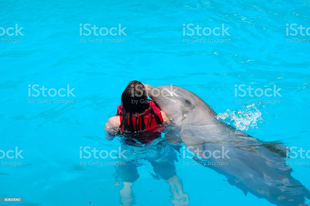Women swimming with a dolphin in the dominican republic stock photo