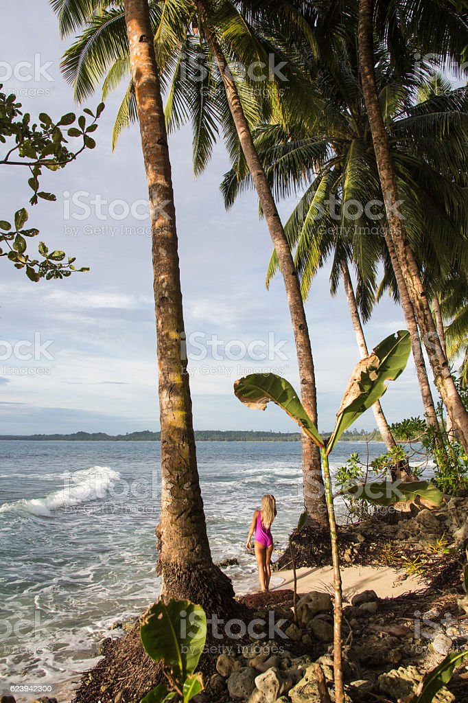 Women underneath the coconut palm stock photo