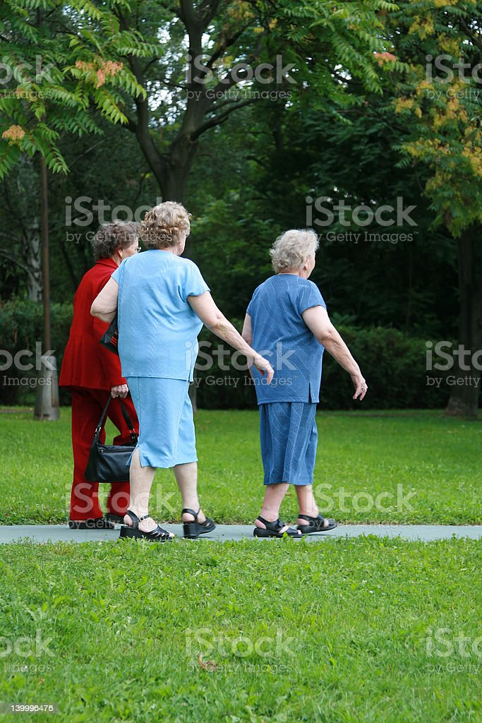 Women walking together royalty-free stock photo