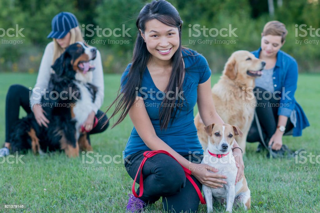 Women With Dogs stock photo