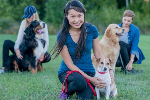 women with dogs - training imagens e fotografias de stock