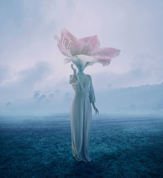 Women with flower head Women with flower head surreal stock pictures, royalty-free photos & images