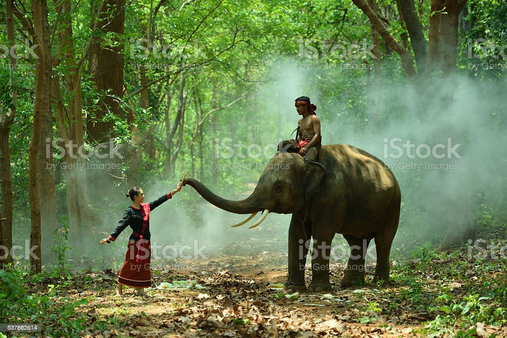 Women with young elephant stock photo