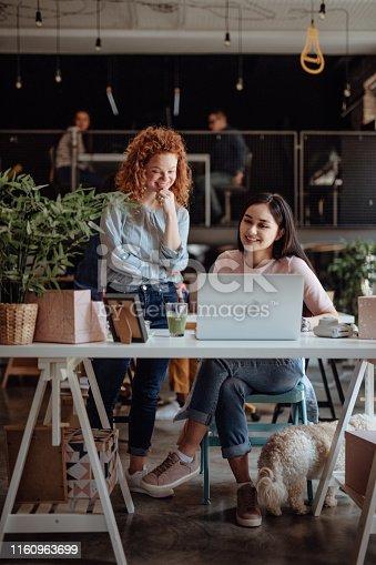 Women working in modern office