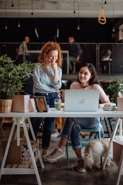 Women working in modern office stock photo