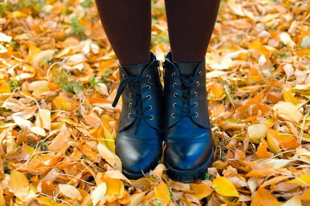 women's black leather shoes stand on the ground covered with yellow autumn leaves. Lace up ankle boots for fall season stock photo
