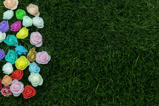 womens day 2018. Group of flowers on grass stock photo