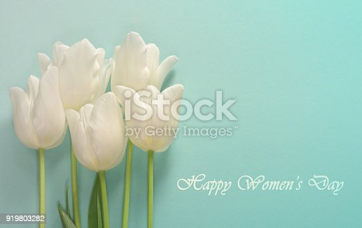 istock Womens day card. White tulips on a light turquoise background 919803282