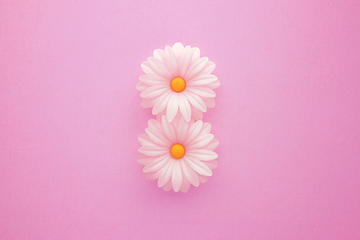 Number 8 formed by white daisies over pink background. March 8 International Women's Day concept. Horizontal composition with copy space.