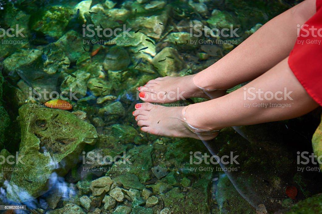 Women's feet in the water stock photo