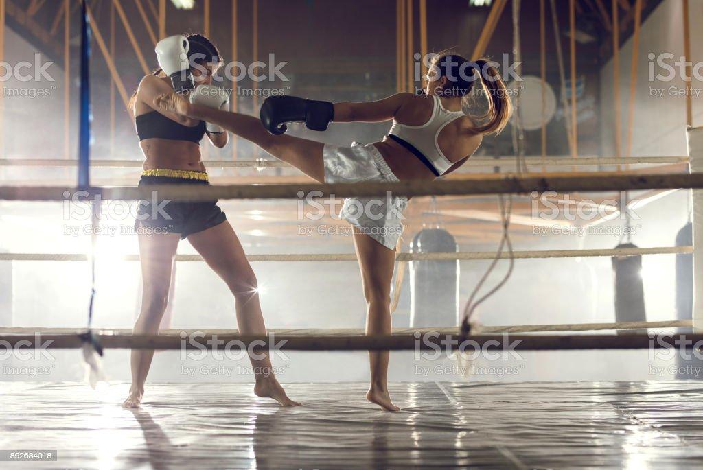 Luta de mulheres em um ringue de boxe! - foto de acervo