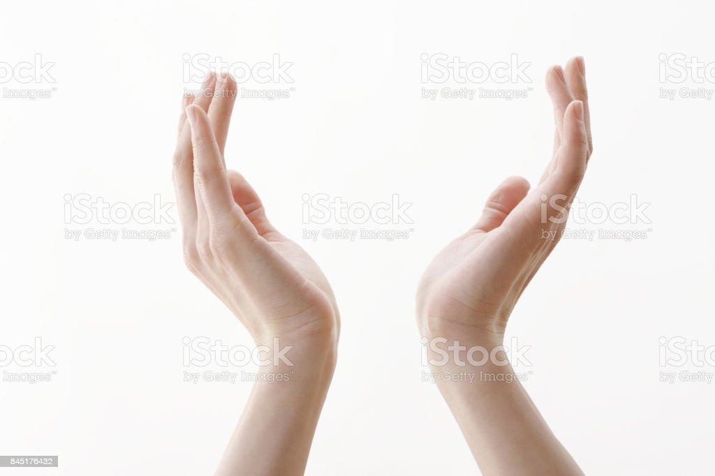 女性の両手 ストックフォト