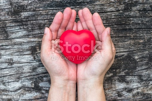 istock Women's heart health care, medical concept with healthy red love heart on aging hand support 954517624