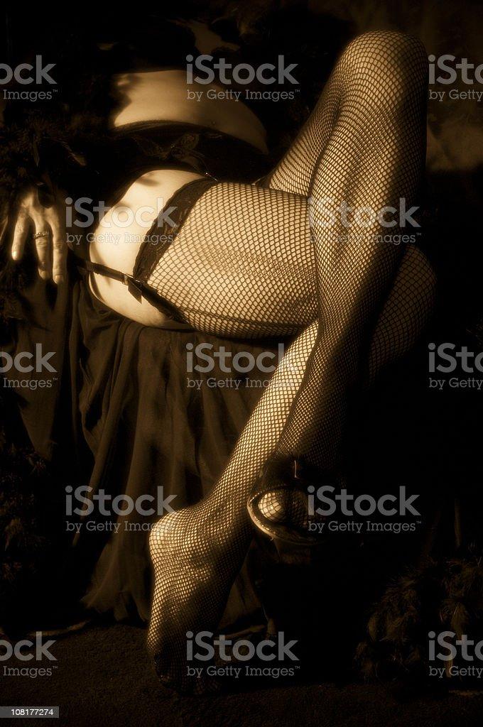 Women's Legs in Fishnet Stockings, Sepia Toned royalty-free stock photo