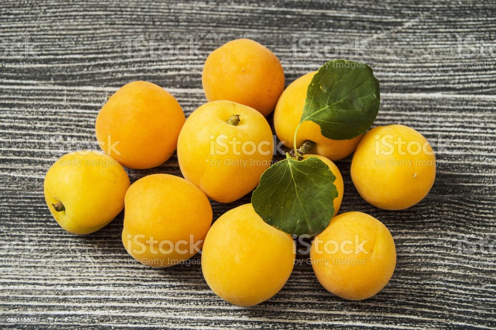 Wonderful apricot pictures for apricot jam and apricot compost royalty-free stock photo