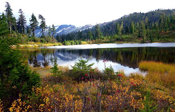 Magnifique en automne Lac Picture lake, le mont Baker - Photo