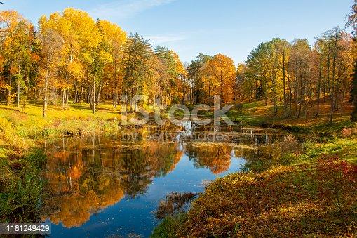 istock Wonderful autumn landscape 1181249429