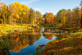 Wonderful autumn landscape with beautiful yellow and orange colored trees, lake or river