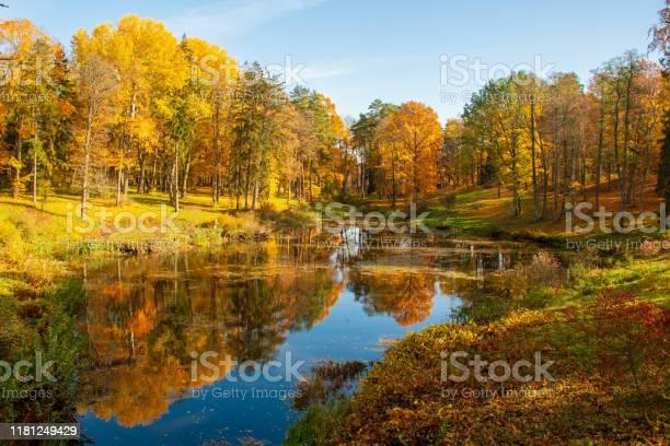 Photo of Wonderful autumn landscape