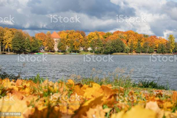 Photo of Wonderful autumn landscape with forest and lake