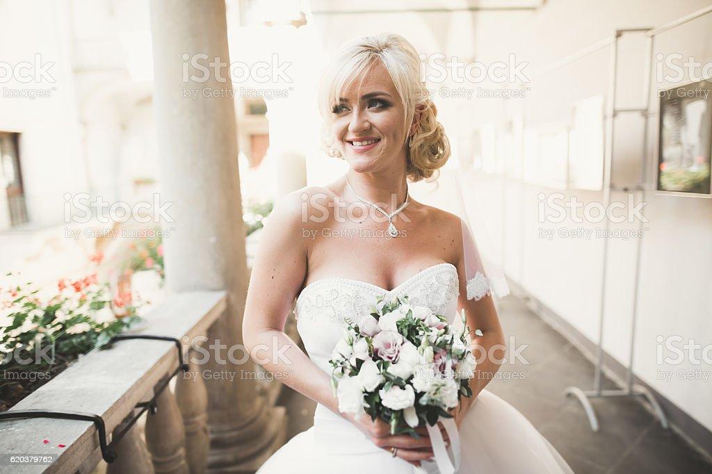 Maravilhosa noiva com um luxuoso vestido branco posar na foto de stock royalty-free