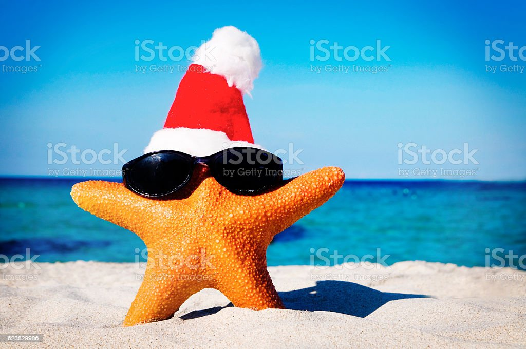 wonderful christmas on the beach starfish concept royalty free stock photo