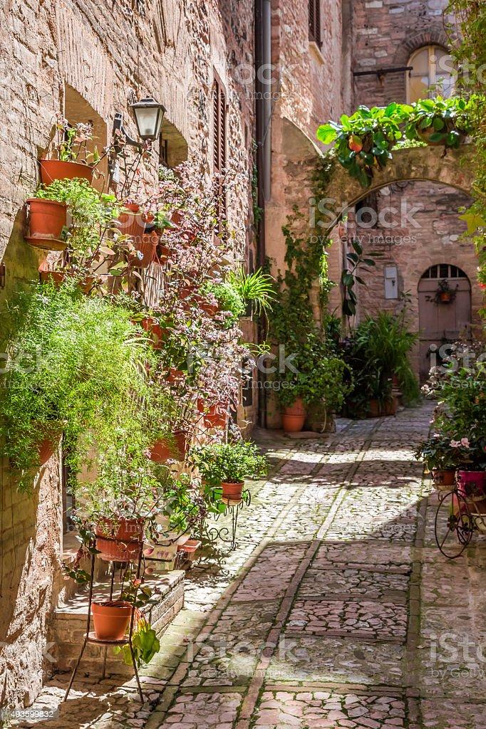 Photo Libre De Droit De Décoration Magnifique Terrasse Dans