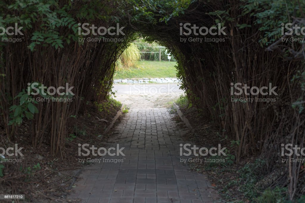 A wonderful door made of wood' stock photo