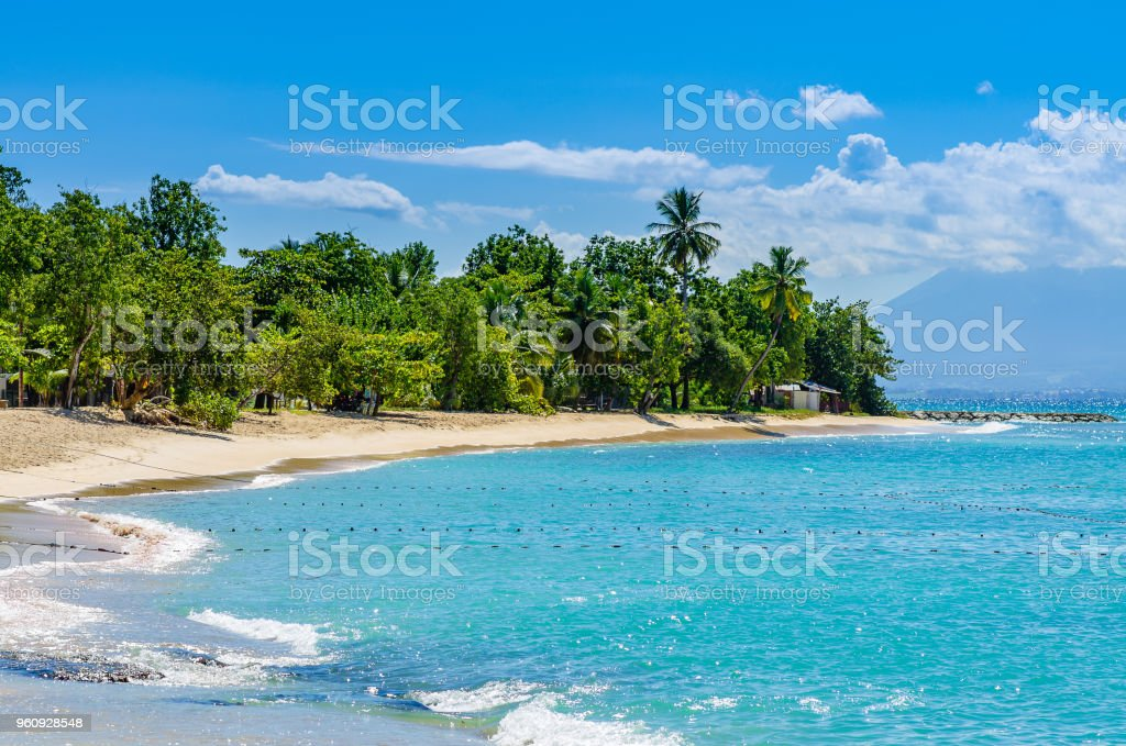 Wonderful golden beach on Grande-Terre, Guadeloupe, stock photo