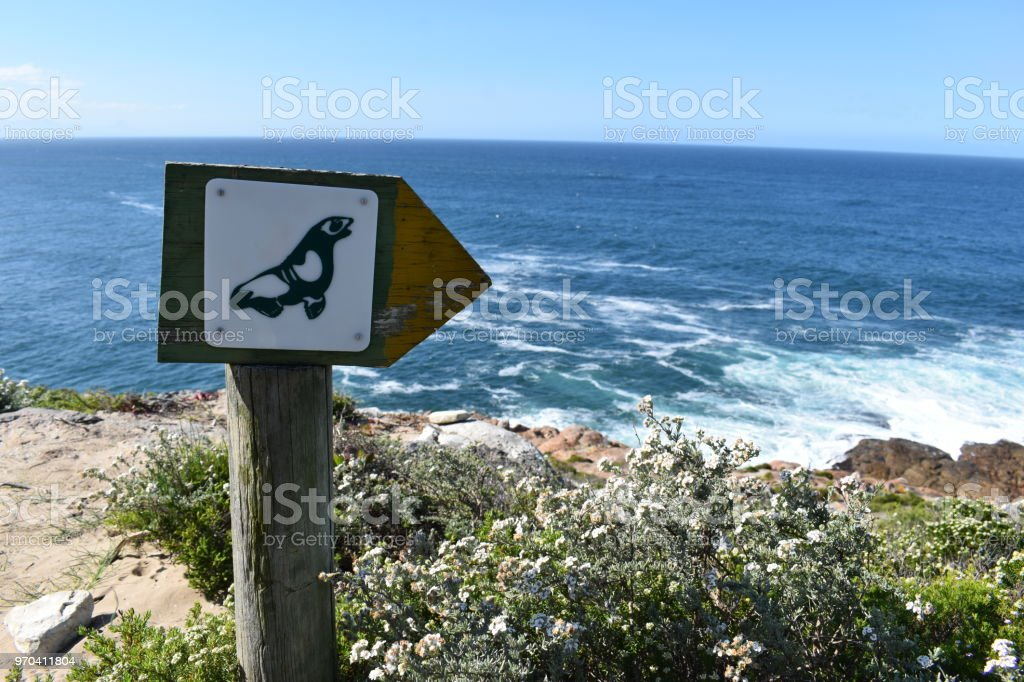 Wonderful landscape at the hiking trail with a guidepost with a seal at Robberg Nature Reserve in Plettenberg Bay, South Africa stock photo