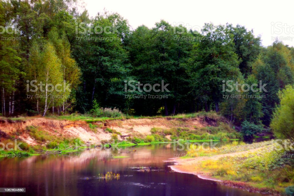 Wonderful Landscape Of Beautiful Forest River In Early