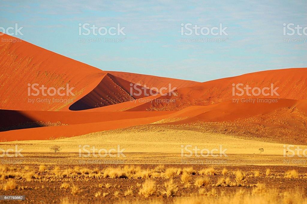 Wonderful Namib Desert in Namibia stock photo