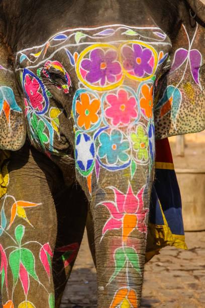 Wonderful painted Elephant, Amber Fort, Jaipur – Foto