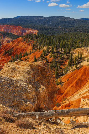Wonderful rock formation in the Bryce Canyon National Park. Utah, United States of America