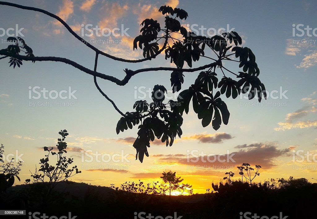 Wonderful sunset royalty-free stock photo