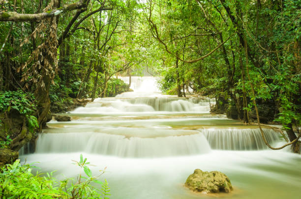 wonderful  tiers of waterfall motion in deep jungle, located erawan waterfall kanchanaburi province, thailand - dazzlingly stock pictures, royalty-free photos & images