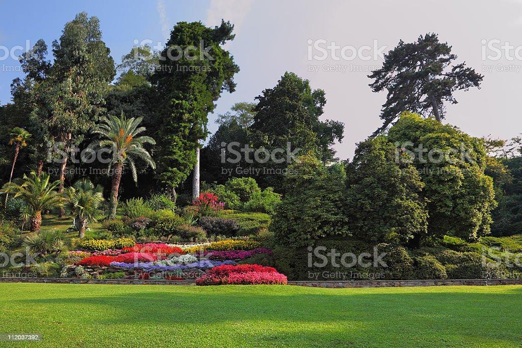 Wonderful vibrant flowerbeds stock photo