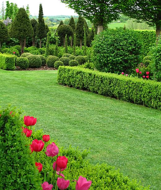 Wonderful well maintained garden picture id133945332?b=1&k=6&m=133945332&s=612x612&w=0&h=oae0btaaqsn7a8tdaj4kxjgrnznlwe62jzved tltuk=