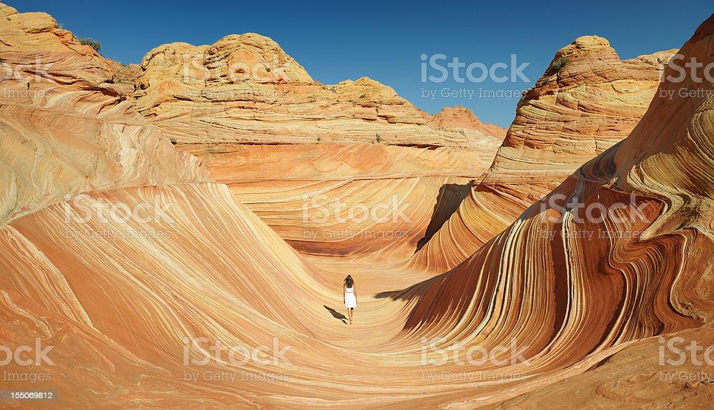 Wonders of Nature (XXXL) royalty-free stock photo