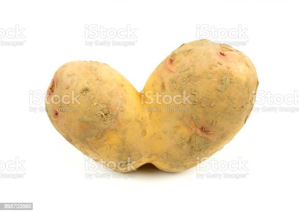 Wonky Conjoined Siamese Potato Stock Photo - Download Image Now