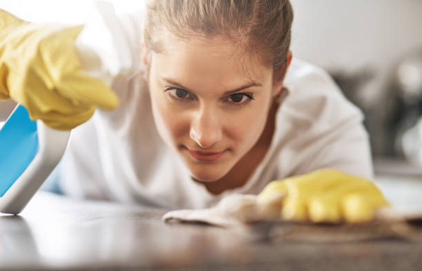 I won't leave a spot behind Cropped shot of a young woman cleaning her home cleaner stock pictures, royalty-free photos & images