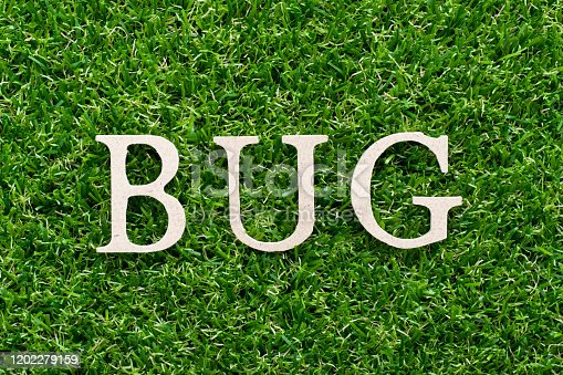 istock Wood alphabet in word bug on artificial green grass background 1202279159