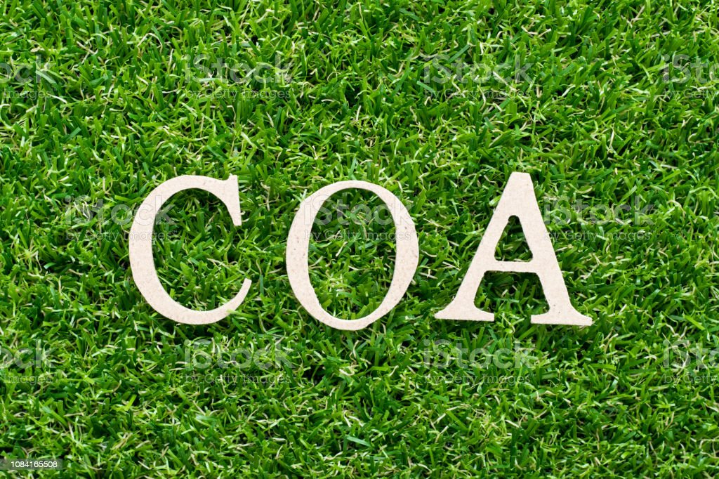 Wood alphabet in word COA (abbreviation of certificate of analysis, certificate of authenticity, cause of action) on artificial green grass background stock photo