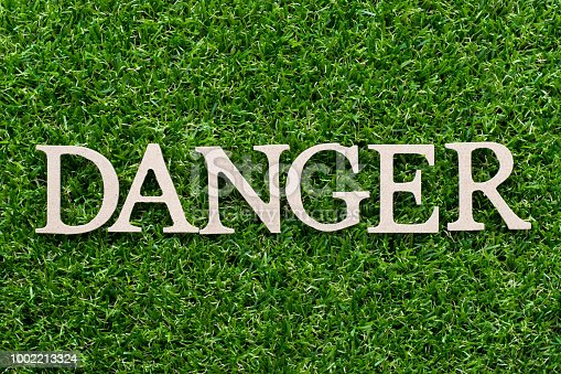 istock Wood alphabet in word danger on artificial green grass background 1002213324