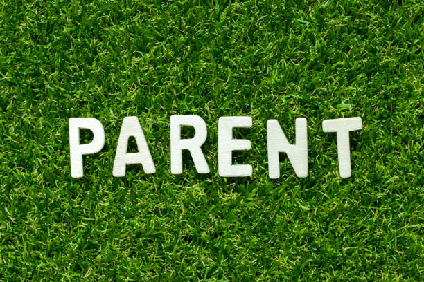 holz-alphabet in wort elternteil auf grünen kunstrasen hintergrund - papa zitate stock-fotos und bilder