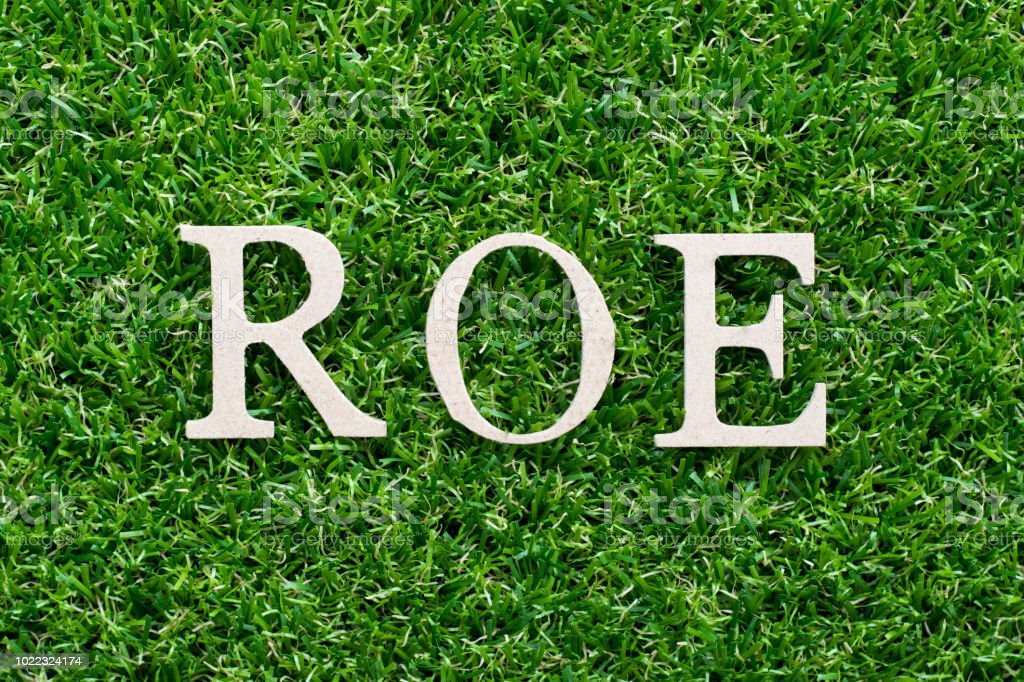 Wood alphabet in word ROE (Abbbreviation of Return on equity) on artificial green grass background stock photo