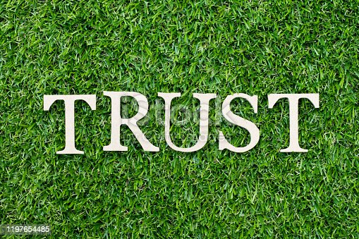 939533958 istock photo Wood alphabet letter in word trust on green grass background 1197654485