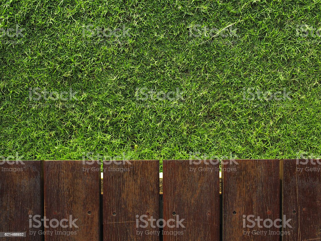 Bois et herbe photo libre de droits