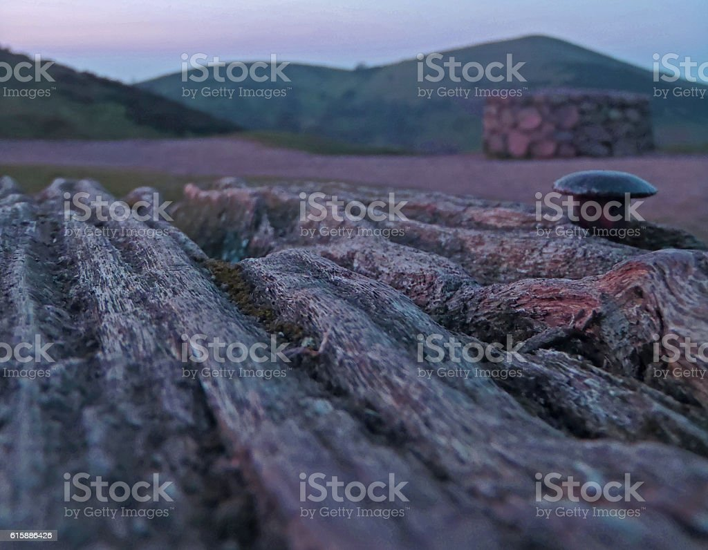 Wood And Landscape stock photo